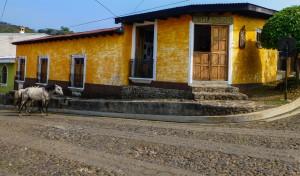 Juayua Hostel Anahuac