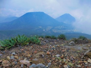 Vulkane Ilamatepec & Izalco