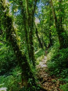Selva Negra bei Matagalpa