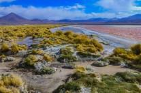 Bolivien