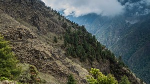 Sherpagaon 2563m